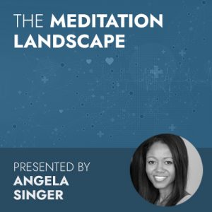 6/23/20 WEBINAR | The Meditation Landscape
