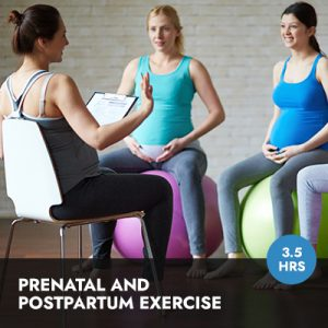 Online Course: Prenatal and Postpartum Exercise